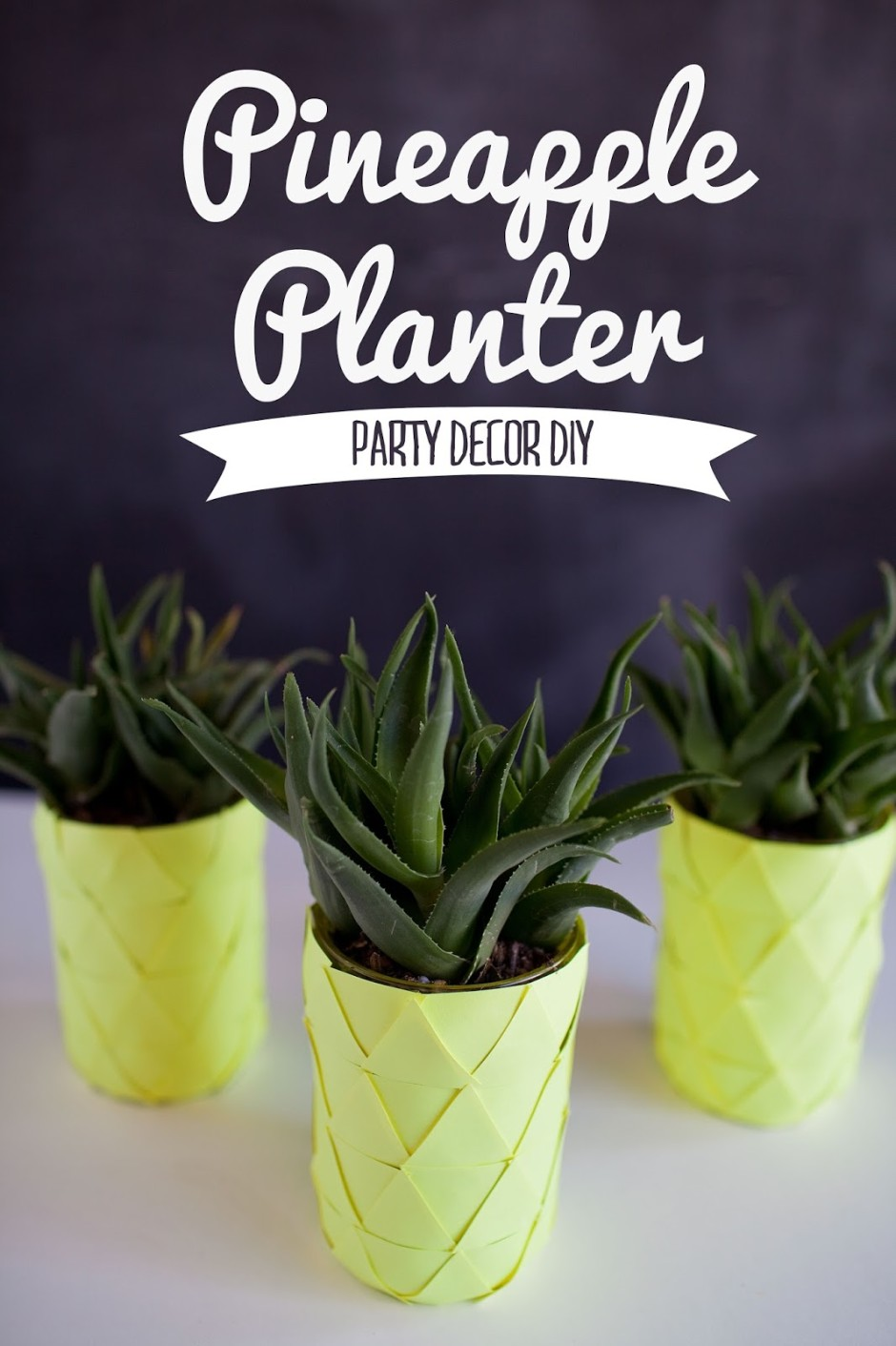 PINEAPPLE-planter