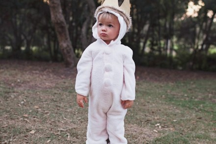 wild-things-costume-max-diy