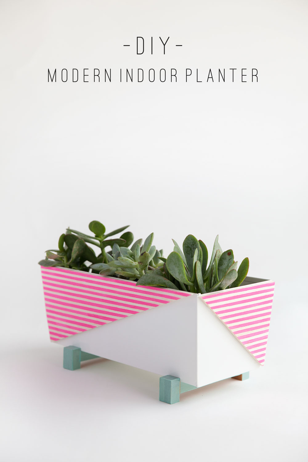 modern-indoor-planter-diy-text