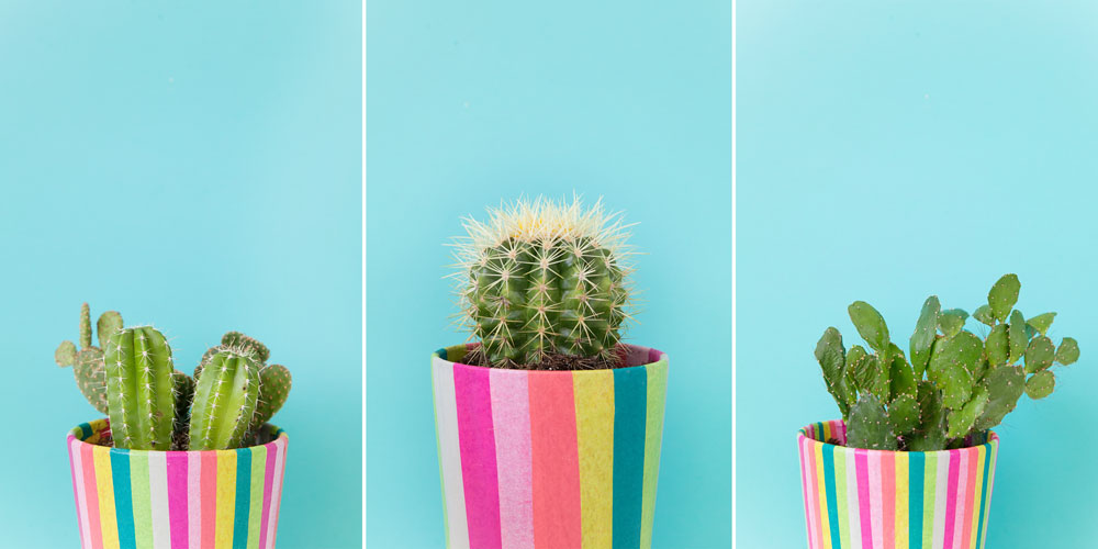 Coloful-DIY-pots-to-make-for-your-cacti