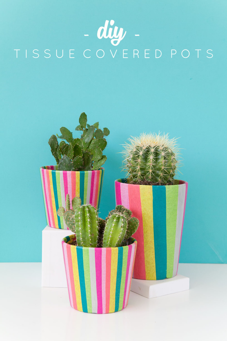 DIY-Tissue-Paper-Covered-Pots