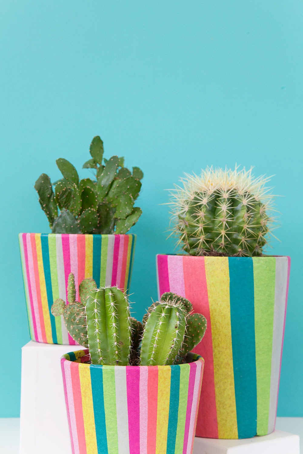 DIY-colorful-striped-pots-and-cute-cacti