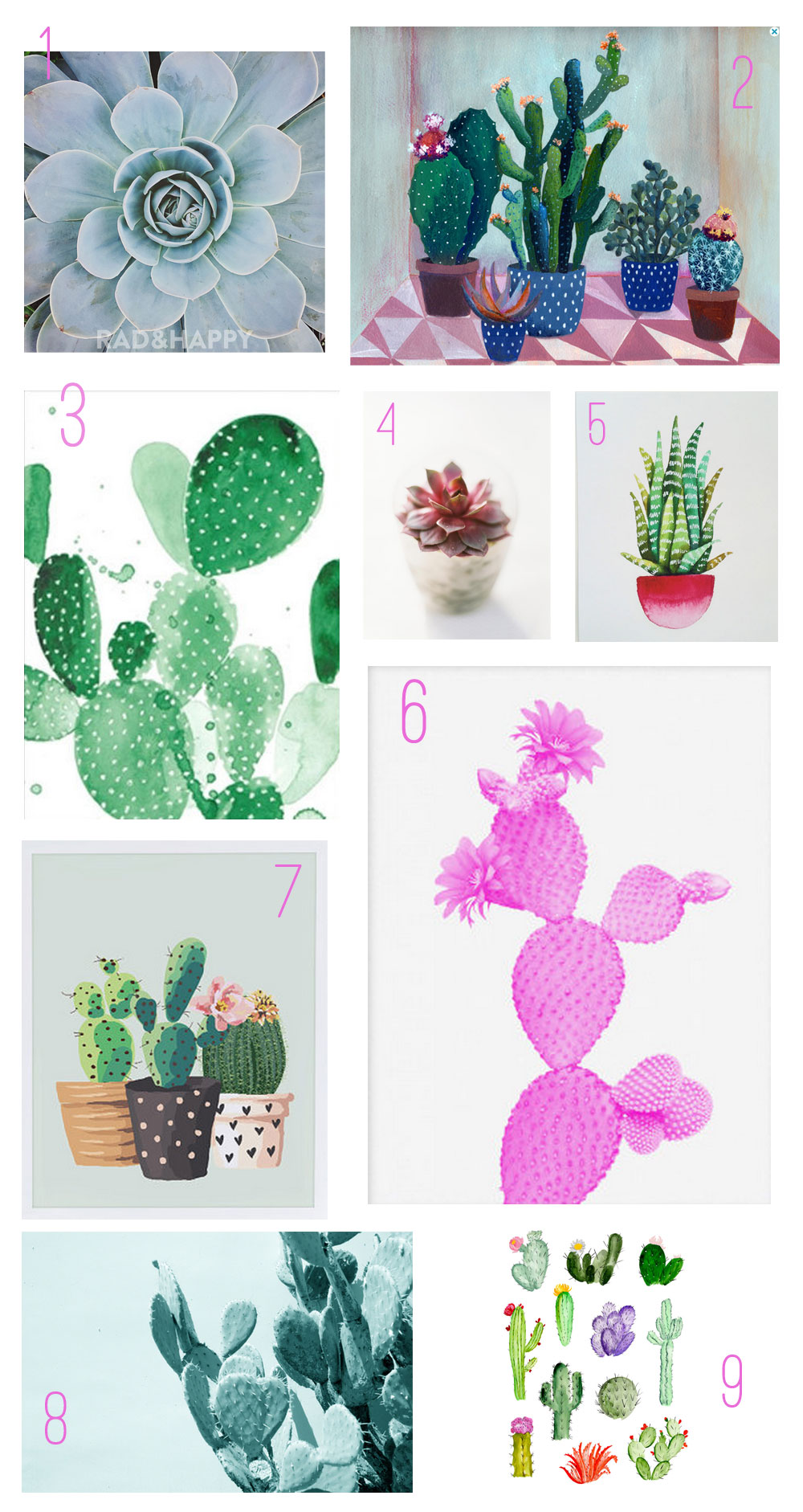 Cactus-and-Succulent-art