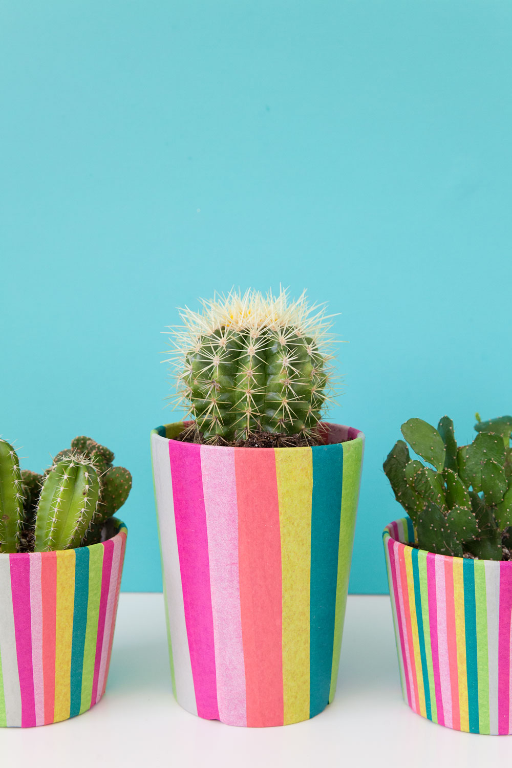 Tissue-paper-covered-pots-add-some-color-and-fun-to-your-plants