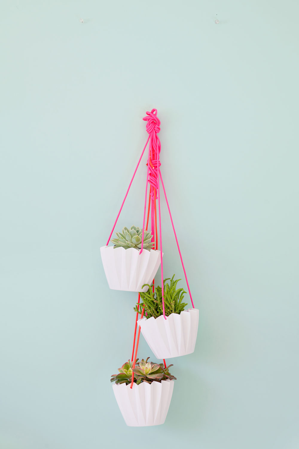 -Easy-to-make-hanging-plants
