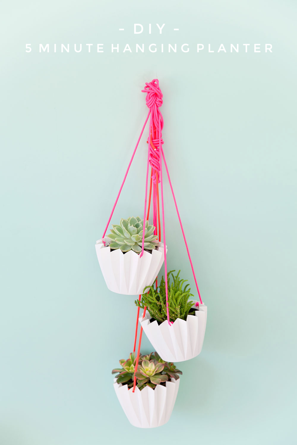 5 Minute Diy Hanging Planters Tell Love And Party